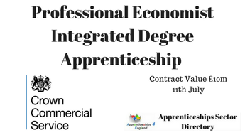Professional Economist Integrated Degree Apprenticeship
