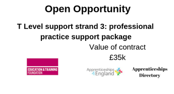 T Level support strand 3: professional practice support package