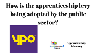 How is the apprenticeship levy being adopted by the public sector?