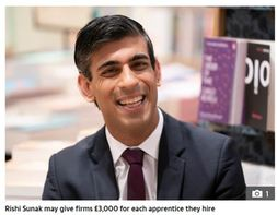 Chancellor Rishi Sunak could give firms £3,000 for each apprentice they hire to help fight growing youth unemployment