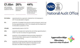 The apprenticeships programme: The National Audit Report
