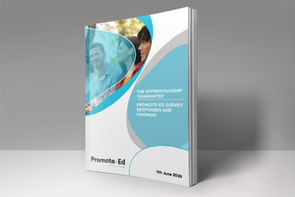 The Apprenticeship Guarantee: Promote-Ed Survey Results and Findings