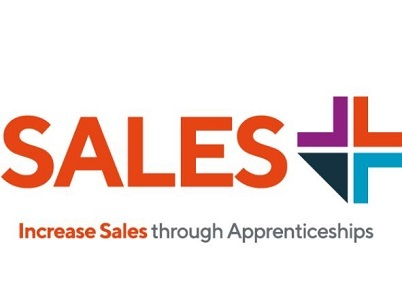 Are Sales Apprenticeships Suitable for Experienced Sales Professionals?